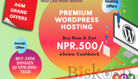 premium_wordpress_hosting_grid.png