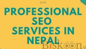 Professional_SEO_Services_in_Nepal_grid.jpg