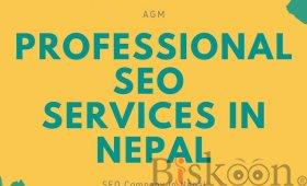 Professional SEO Services in Nepal