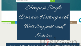 Cheapest_Single_Domain_Hosting_with_Best_Support_and_Service_grid.png