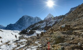 Everest Base Camp Trek Agency in Nepal
