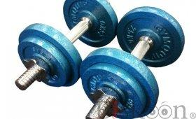 22 Kg Olympic Dumbell Set On Sale