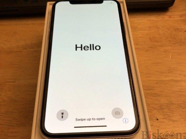 NEW Apple iPhone X 128GB Silver GSM Unlocked